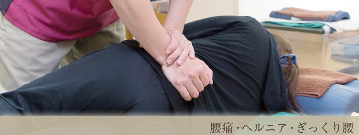 腰痛・ヘルニア・ぎっくり腰